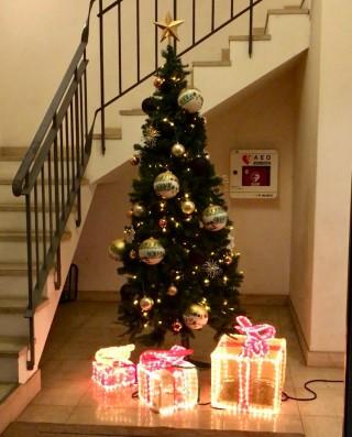 クリスマスツリーフィオーレの森